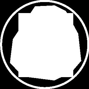 Jeunesse Global Idea Icon